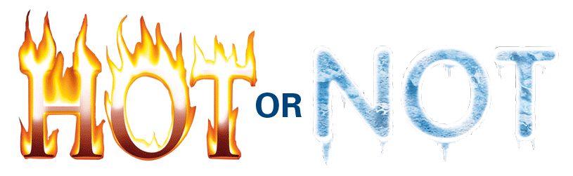 2014 in Review: Hot or Not? | Dash of Insight